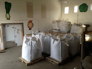 Last week winter share, this week fertilizer storage.